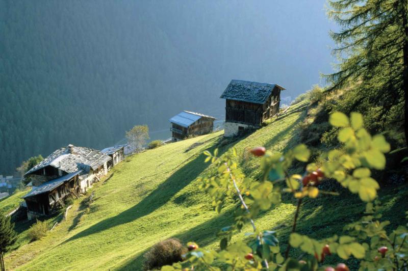 vacanze in Trentino Val di Sole 7